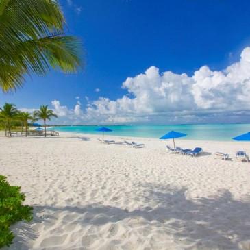 Экскурсионный тур «Флорида+Багамы»