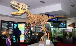 Тур «Вятские динозавры», 2 дня